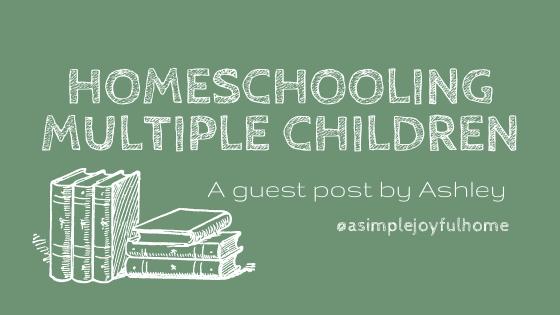 guest post homeschooling multiple children
