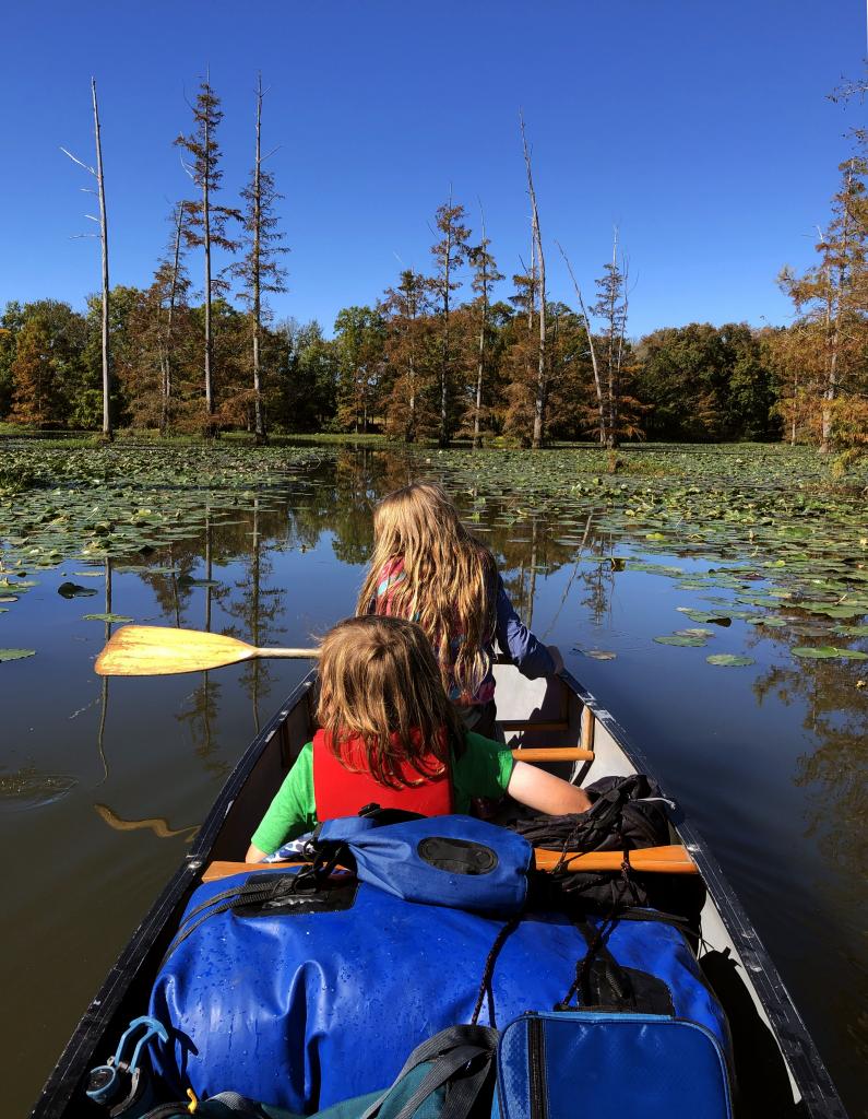 little maumelle river paddle out little rock arkansas