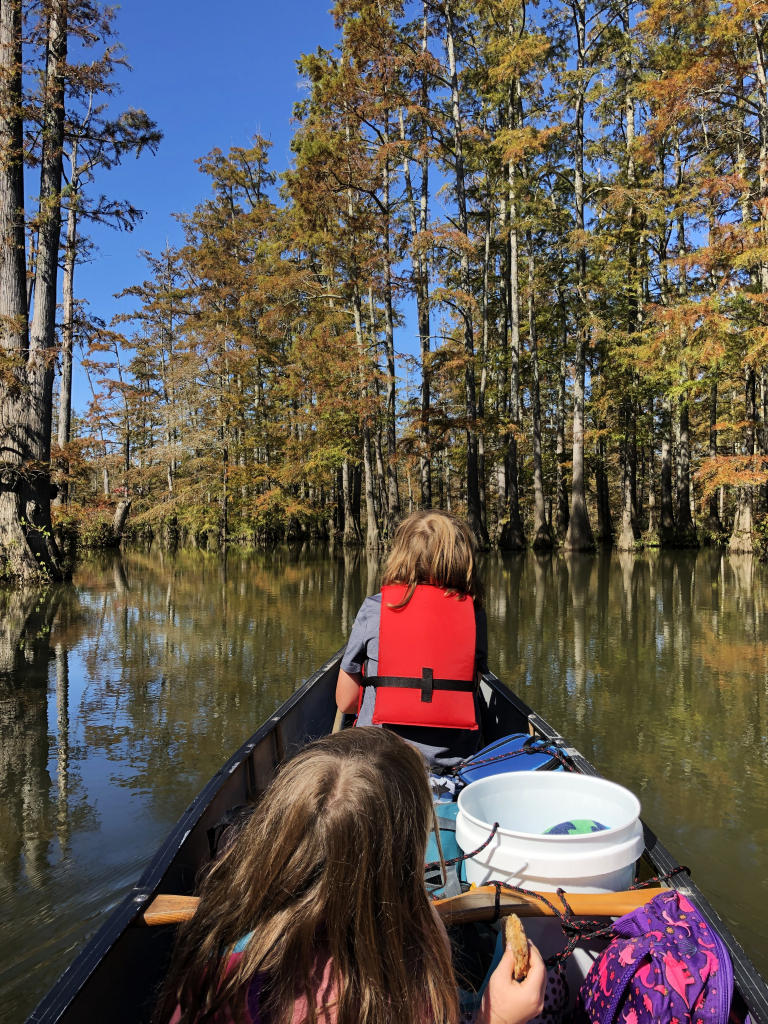 little maumelle river canoe trip canoe with kids